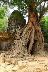 Храм Та Сом, Ангкор, Камбоджа
