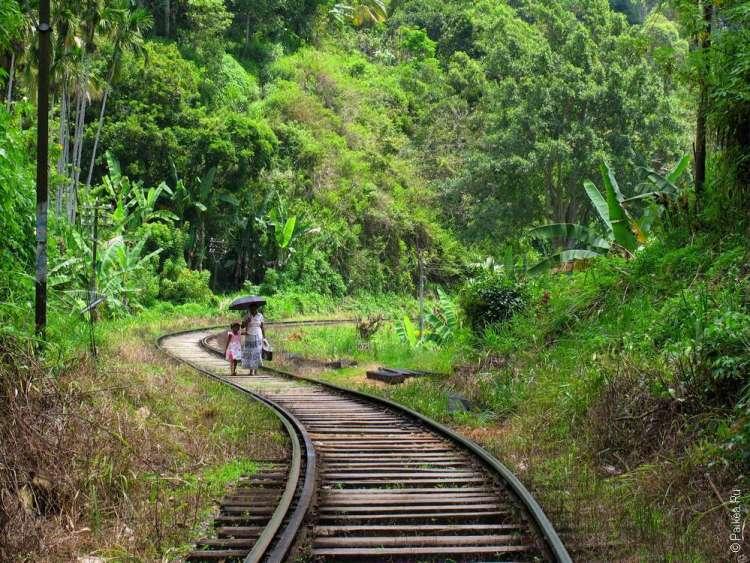 Железная дорога в Шри-Ланке