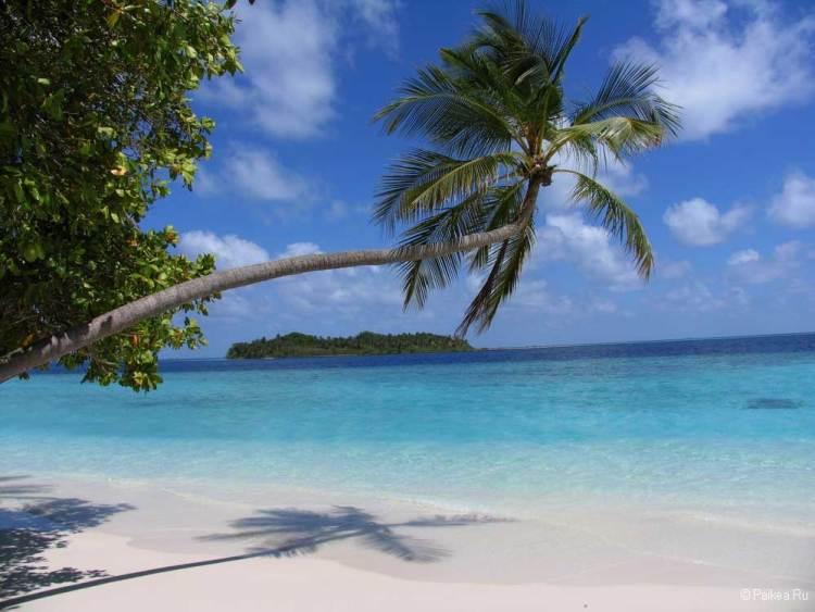 Отдых на Мальдивах сезон