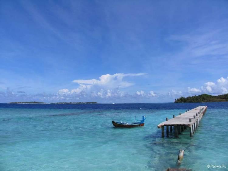 Мальдивы коралловые рифы