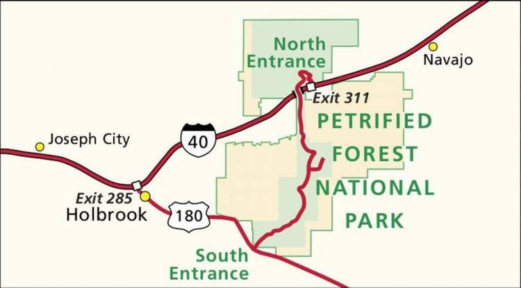 Вход в окаменевший лес (Петрифайд Форест)