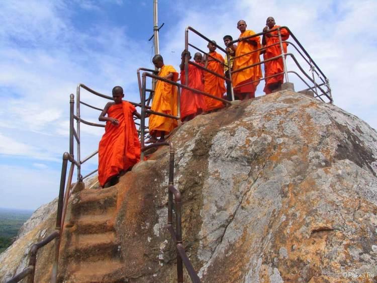 Шри-Ланка плюсы и минусы