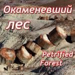 Окаменевший лес (Петрифайд Форест)