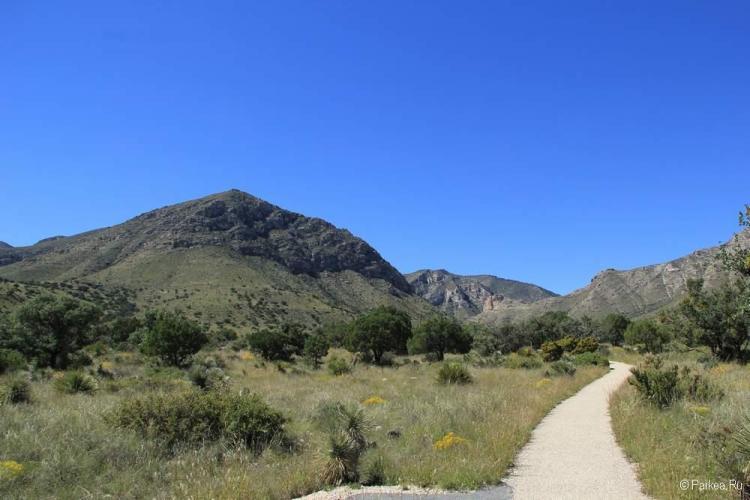 Горы Гвадалупе, США, (Guadalupe national park, USA)