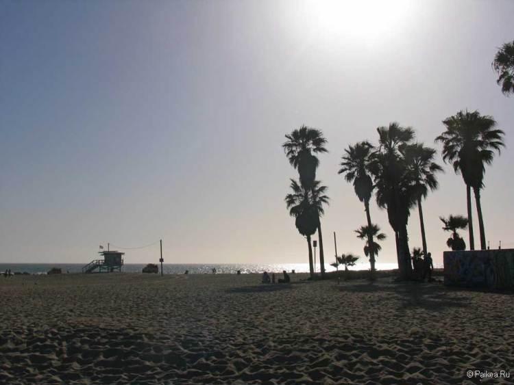 пляж венис лос анджелес