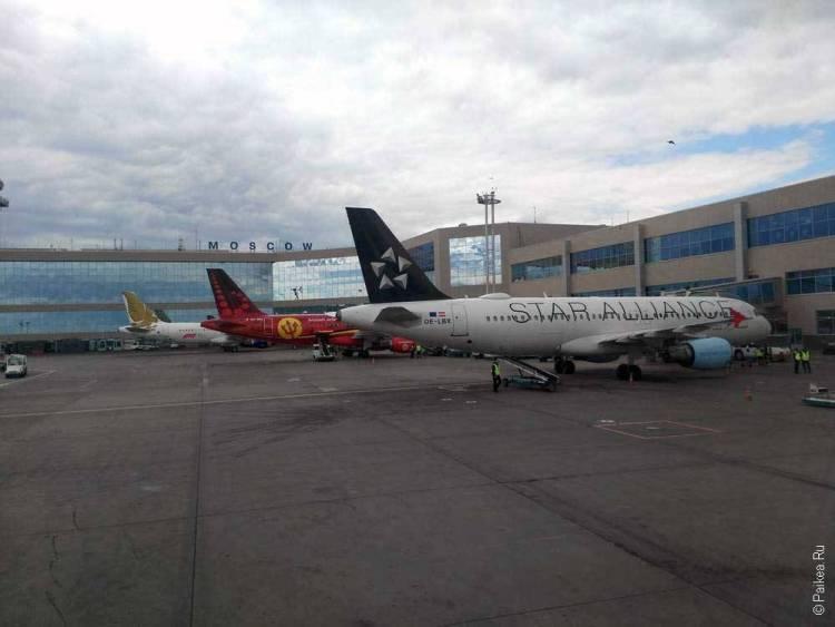 Москва, аэропорт Домодедово