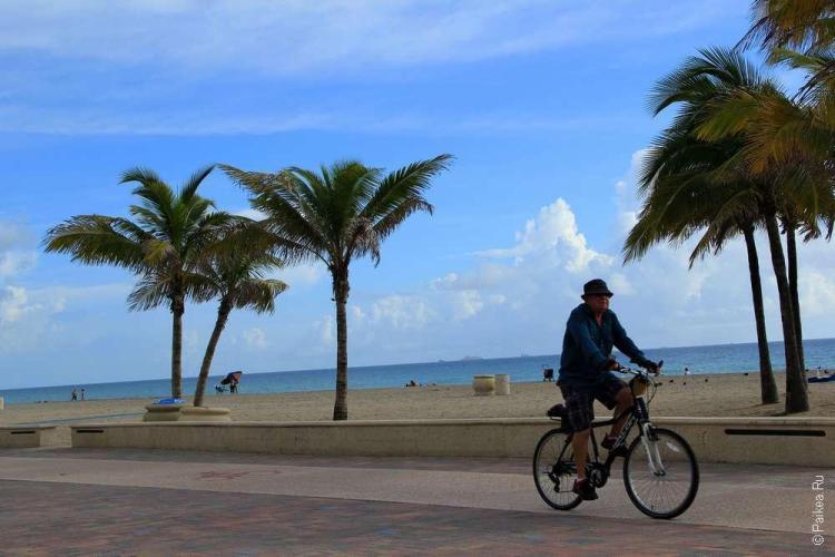 Достопримечательности Флориды пальмы на пляже