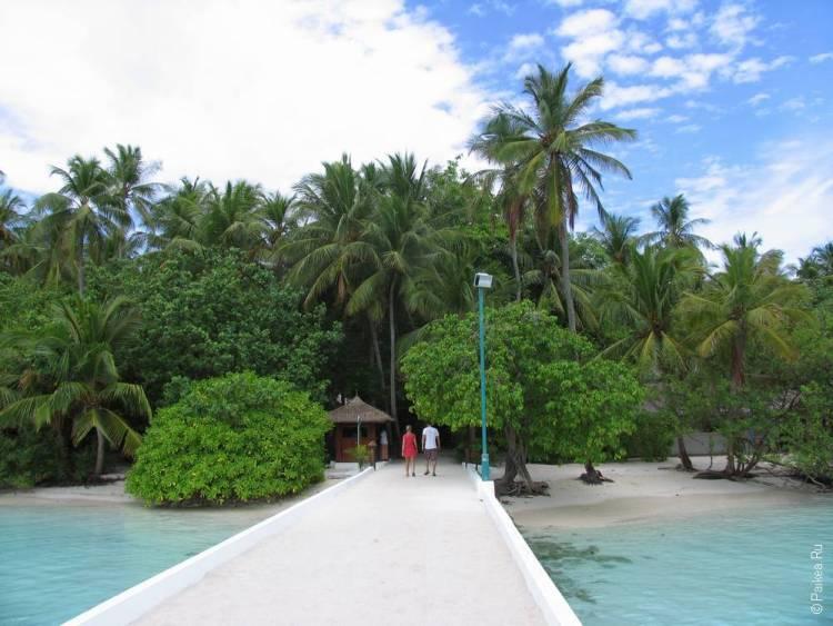Безопасный отдых на Мальдивах