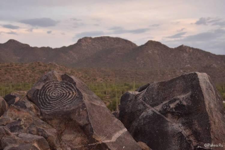 Сагуаро парк (Saguaro National Park) 03