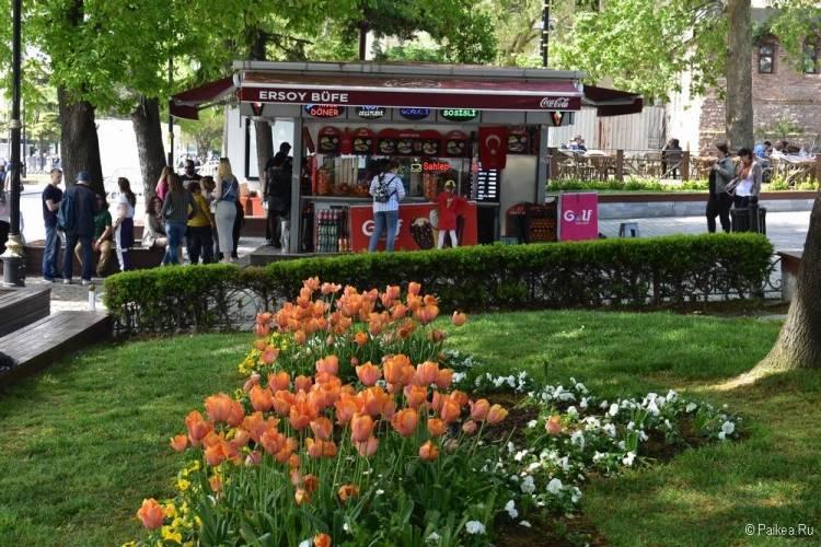 Поездка в Стамбул погода