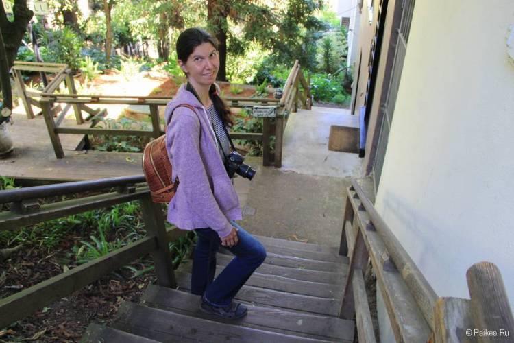 Улица со ступеньками Гринвич-Степс в Сан-Франциско 13