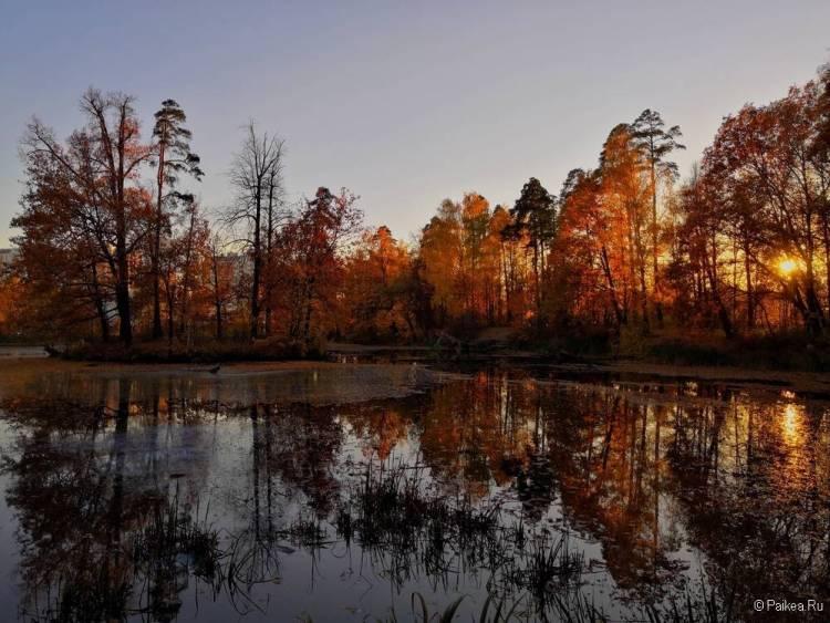 Самые красивые закаты и рассветы мира 84