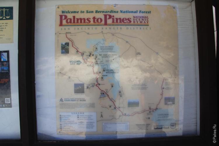 палм спрингс калифорния сша 31