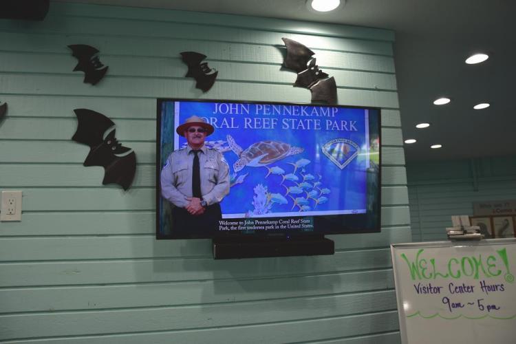 парк джон пеннекамп корал риф / john pennekamp coral reef state park 14