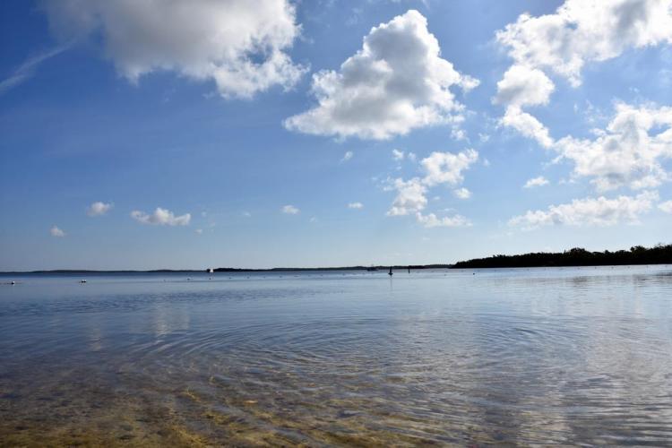парк джон пеннекамп корал риф / john pennekamp coral reef state park 49