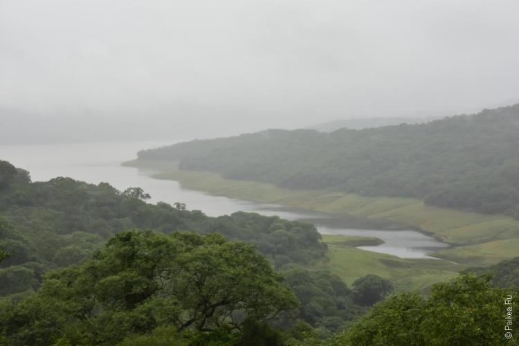 национальный парк потеро де яла, аргентина / parque nacional potero de yala 13