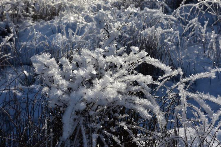 ушуайя зима