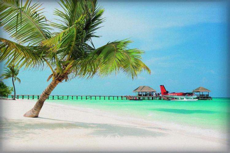 отели на мальдивах с песчаной косой lux south
