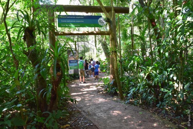 парк птиц бразилия (parque das aves) 6