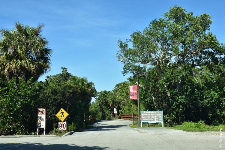 заповедник динг дарлинг на острове санибел, флорида, сша / ding darling national wildlife refuge 61