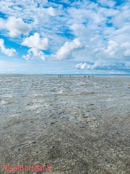 passage de gois à marée basse