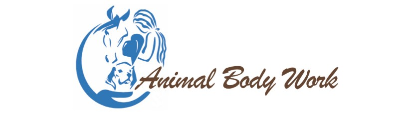 Pain and Wellness Solutions Animal Body Work