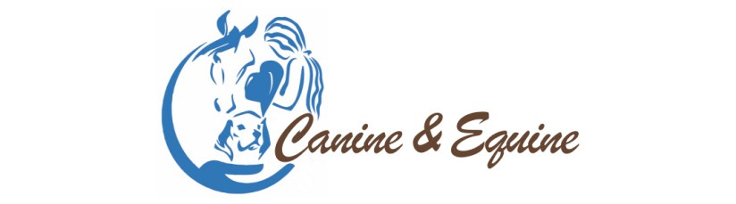 Pain and Wellness Solution Canine & Equine