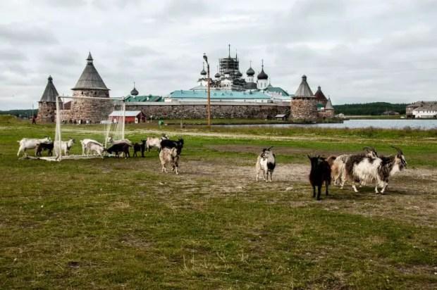 come organizzare un viaggio in russia low cost