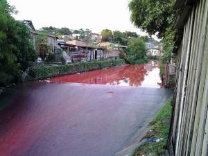 Água de igarapé fica 'rosa' e moradores denunciam poluição