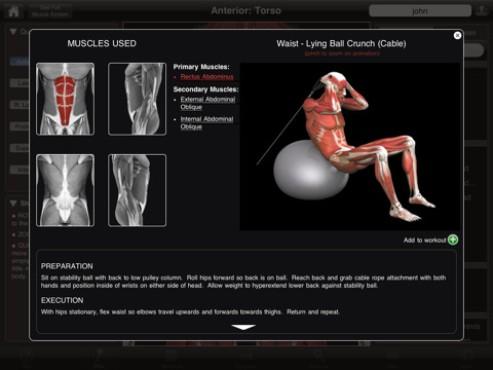 App cria séries de exercícios que trabalha todos os músculos