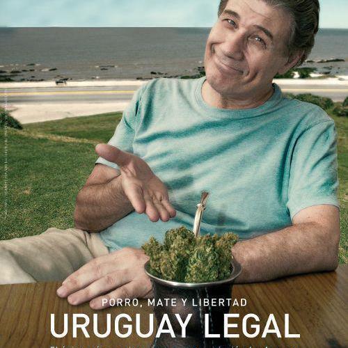 Uruguai plantará maconha em prédios militares para garantir segurança