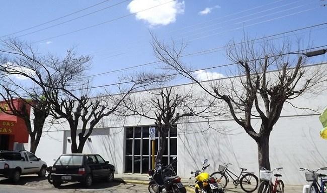 Árvores são furadas e envenenadas de forma misteriosa