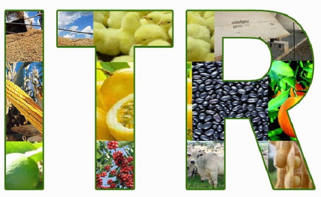 Receita oferece novo programa para declaração de ITR