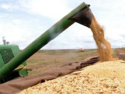 Safra de grãos 2016/2017 deve chegar a 227,9 milhões de toneladas