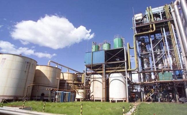 Leilão de biodiesel vende 699,4 milhões de litros com deságio médio de 19,6%