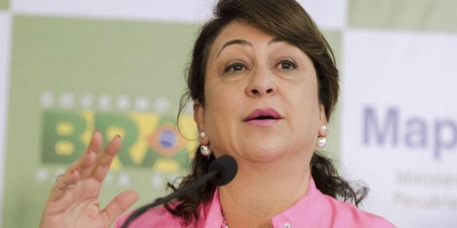 PMDB entra com pedido de expulsão de Kátia Abreu