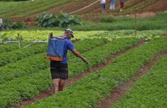 As sequelas dos agrotóxicos para trabalhadores rurais