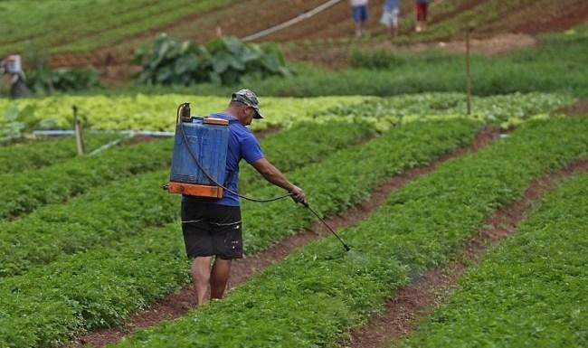 ADI questiona benefícios fiscais a agrotóxicos e defensivos agrícolas