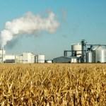 Indústria sucroalcooleira fixa preço da próxima safra até julho