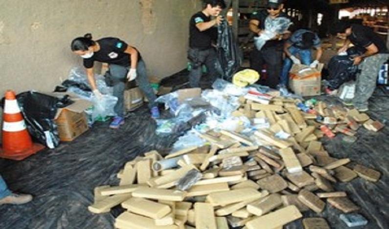 Polícia Civil incinera 450 kg de entorpecentes em Porto Velho
