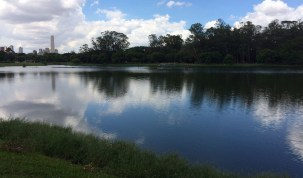Corpo de bebê aparece boiando no lago do Parque Ibirapuera
