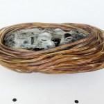 Mulher é flagrada com fones, cabos e 9,6 metros de fio de cobre na genitália