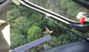 Aeronave cai na região Norte de Santa Catarina