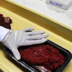 Carnes de frigoríficos investigados passam em teste de qualidade