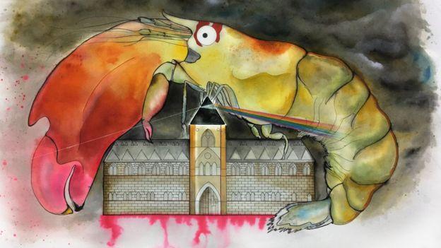 Cientistas de Oxford divulgaram capas de disco fictícias do Pink Floyd 'inspiradas' na descoberta de camarão; essa seria uma capa para o 'The Wall'
