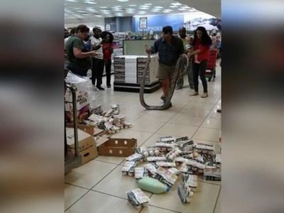 Cliente vai pegar iogurte em mercado e acha cobra de 3,5 metros