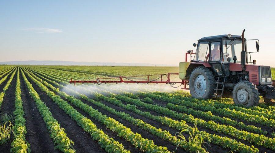Mais de 14 mil agricultores já refinanciaram dívidas em RO; prazo encerra 29 de dezembro