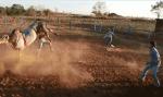 Peão de 19 anos morre após levar coice de touro na cabeça, em RO; vídeo