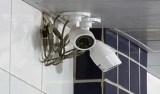 Câmeras instaladas em vestiários com base em acordo não violam intimidade de trabalhadores