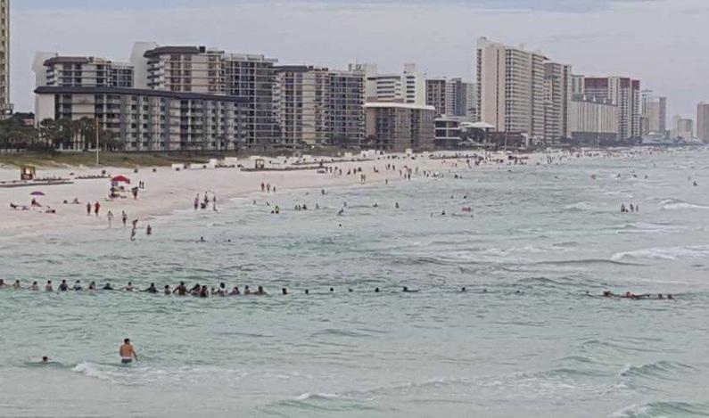 Corrente humana de banhistas salva família de afogamento em praia dos EUA